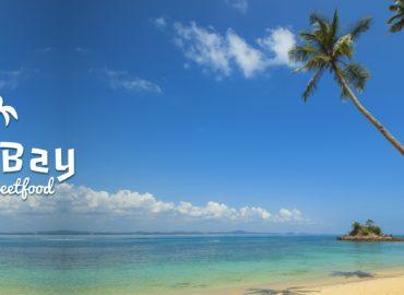 Palm Bay Caribbean Case Study